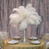 Wholesale ostrich feathers for table decoration