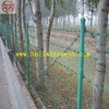 Galvanized Barbed Wire (ISO9001 manufacture)
