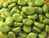 chinese green kidney bean