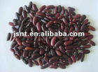 dark red kidney bean(high quality KB)