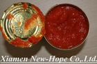 28 30 Tomato Paste In Drum / In Tin