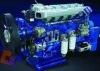 SHACMAN SHAANXI WEICHAI WP12 Engine assy.612630820005
