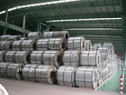 Prepainted Steel Coils(PPGI)
