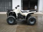 Gator 250