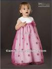 2012 New Design Discount Cinderella Flower Girl Dress TB-028