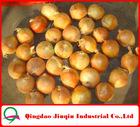"JQ ""Shandong Onion"" 2012 New Price of Fresh Onion ( Yellow Onion / Red Onion)"