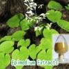 Icariin/Epimedium Extract,Icariinbrevicornum Maxim