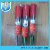 Valentine Rose Gift Teddy Bear