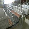 High Quality Sow Obstetric Table for pig farm