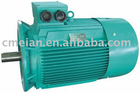 Three Phase Induction AC Asynchronous Electric Motor