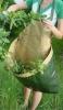 Pruning Bag