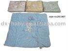 2011 baby blanket