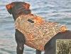 Fascinated Camo neoprene hunting dog vest
