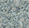 Chinese Cheapest Granite Pearl Flower Granite G383