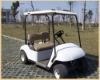 Two Seats electric golf cart