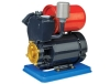 AUPS Series Self-priming Peripheral Pump