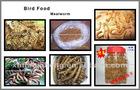 Animal Feed,Mealworm
