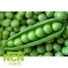 IQF Frozen Green Pea-Zhongwan 6