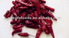 bullet chilli, great hot chilli