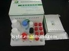 Bird Flu elisa kit/Avian Influenza Virus antibody ELISA test kit