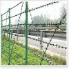 barbed wire mesh