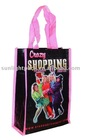 2011 the most popular pp woven shopping bag