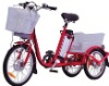 electric tricycle for cargo/CE certification/250 W MOTOR