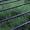 Integral drip irrigation hose
