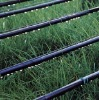 Integral drip irrigation hose