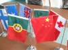 Digital Printing for Flags