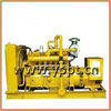 Top Quality ISO CE Approved Domestic Gas Generator