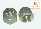 Sand Blasted Brass Nut Pipe Fittings