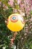 Bird Eyes Balloon