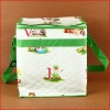 Top Quality Green Printed Nonwoven Cooler Storage Box