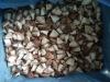 2011 IQF Mushroom Quarter