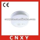 smoke detector ip camera