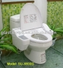 Automatic Toilet