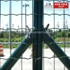 Euro fence (ISO 9001:2008, 15 year factory)