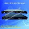 Flash IP digital Encoder (UDP)