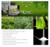 stevia extract-Reb A