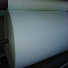 Polyester mat
