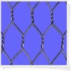 galvanized chicken fence(manufacturer)