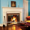 freestanding Wall Mounted Gas Fireplace
