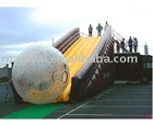 Inflatable Slide with Zorb ball & Grass ball