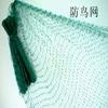 blue bird netting