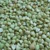 Raw buckwheat kernels