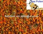 2012 new Tea Flower Pollen