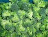 supply top quality IQF frozen broccoli