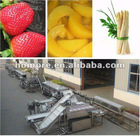 vegetable and fruit tin canning production plant