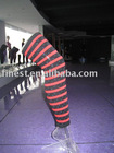 lady's striping legging
